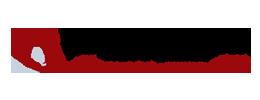 Dannemiller Tyson Associates Logo